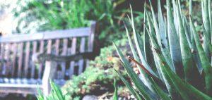 gardener-05